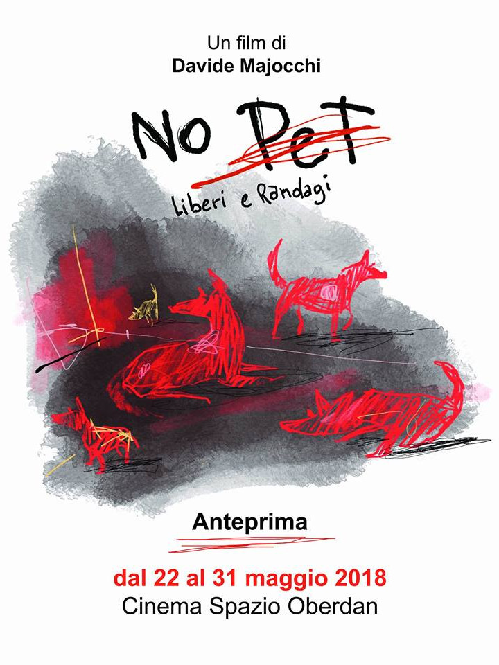 No Pet - Liberi e randagi